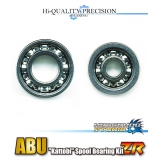 """Kattobi"" Spool Bearing Kit - ZR"