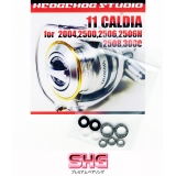 Комплект подшипников SHG 2011 CALDIA